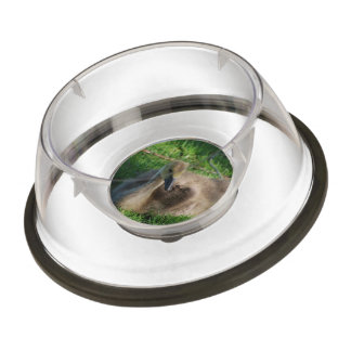 Adorable Baby Goose Pet Bowl