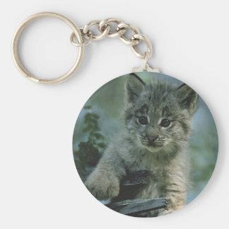 Adorable Baby Lynx Basic Round Button Keychain