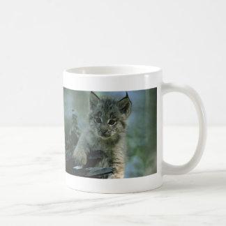 Adorable Baby Lynx Classic White Coffee Mug