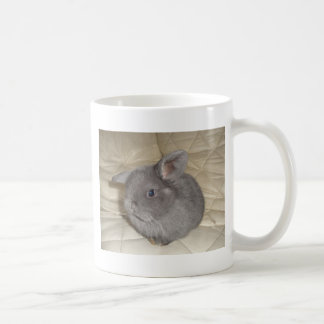 Adorable Baby Mini Lop Coffee Mug