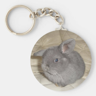 Adorable Baby Mini Lop Keychain
