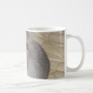 Adorable Baby Mini Lop Coffee Mugs