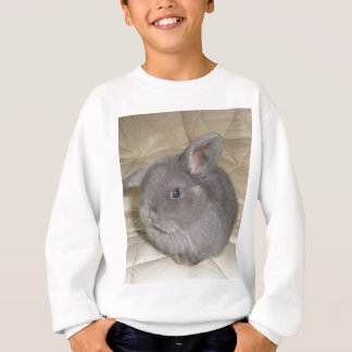 Adorable Baby Mini Lop Sweatshirt