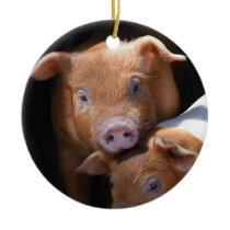 Adorable Baby Pigs Ceramic Ornament