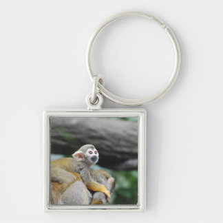 Adorable Baby Squirrel Monkey Keychains