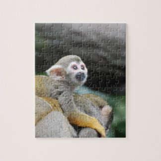 Adorable Baby Squirrel Monkey Jigsaw Puzzle