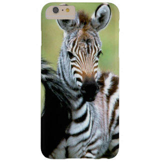 Adorable Baby Zebra Barely There iPhone 6 Plus Case