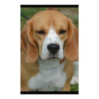 Adorable Beagle Stationery