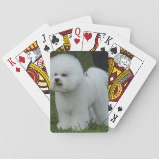 Adorable Bichon Deck Of Cards