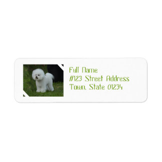 Adorable Bichon Label
