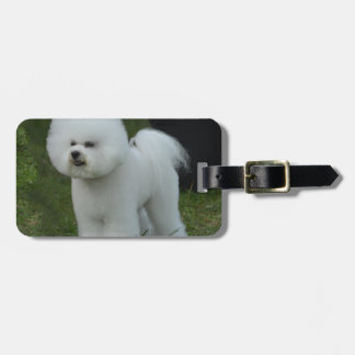 Adorable Bichon Tags For Bags