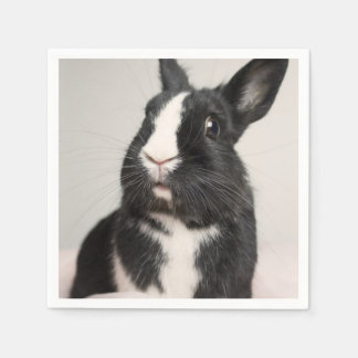 Adorable Black and White Bunny Rabbit Paper Napkin