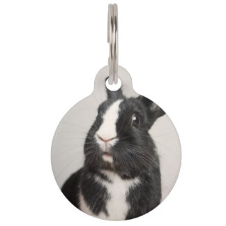 Adorable Black and White Bunny Rabbit Pet Tag