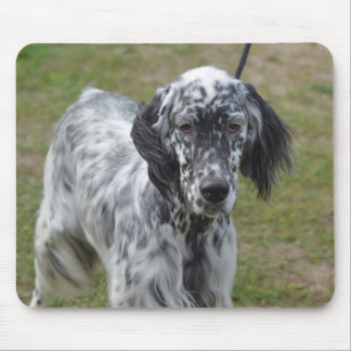 Adorable Black and White English Setter Dog Mouse Pad
