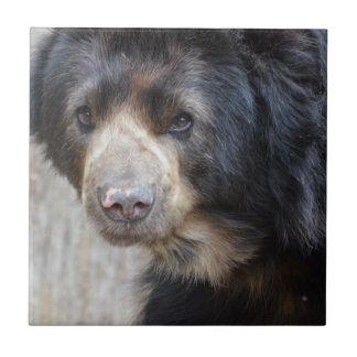 Adorable Black Bear Ceramic Tile