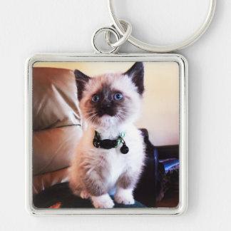 Adorable Blue Eyed Masked Kitten Photograph Keychain