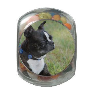 Adorable Boston Terrier Glass Jars