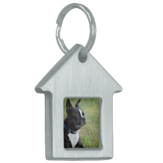 Adorable Boston Terrier Pet ID Tags