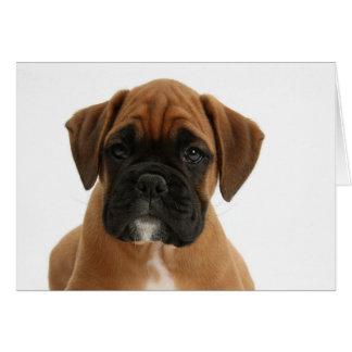 Adorable Boxer Puppy Card