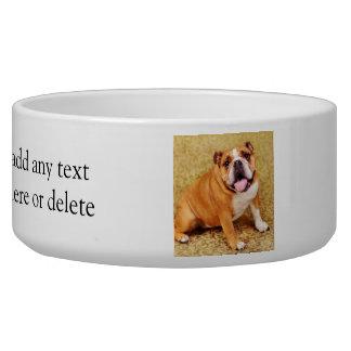 Adorable Bulldog Bowl