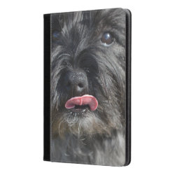 iPad Air Folio Case by Ivoke with Cairn Terrier Phone Cases design