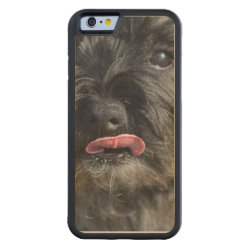 Carved ® iPhone 6 Bumper Wood Case with Cairn Terrier Phone Cases design