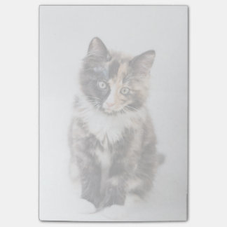 Adorable Calico Kitten Post-it Notes