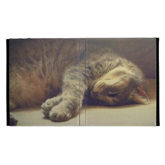 Adorable Cat iPad Folio Case