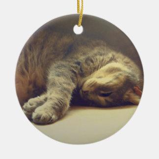 Adorable Cat Ceramic Ornament