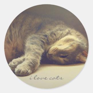 Adorable Cat Classic Round Sticker
