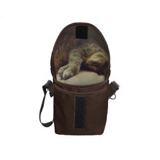 Adorable Cat Courier Bags
