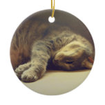 Adorable Cat Double-Sided Ceramic Round Christmas Ornament