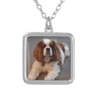 Adorable Cavalier King Charles Spaniel Silver Plated Necklace