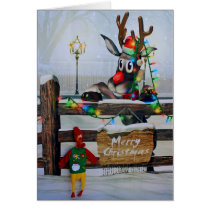 Adorable Chicken and Rudolph Christmas Card! Card