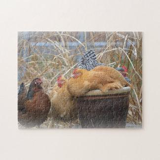 Adorable Chicken Puzzle