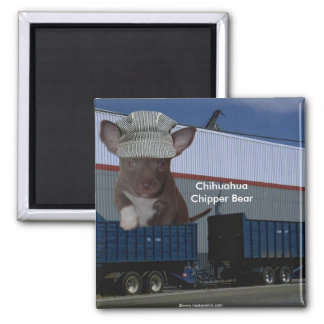 Adorable Chihuahua Chipper Bear Conductor Magnets