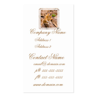 Adorable Chipmunk Business Card Templates