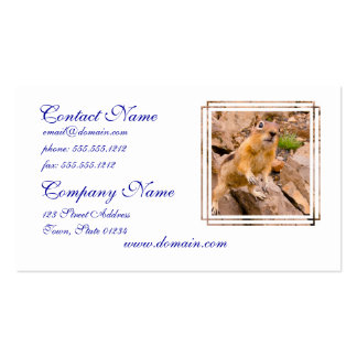 Adorable Chipmunk Business Card Template