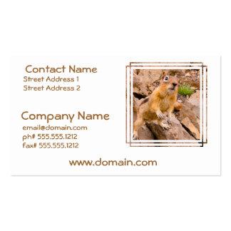 Adorable Chipmunk Business Card