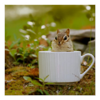 Adorable Chipmunk in a Cup Poster