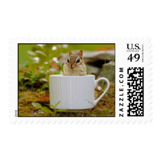 Adorable Chipmunk in a Tea Cup Postage