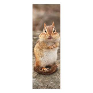 Adorable Chipmunk Mini Business Card