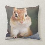 Adorable Chipmunk Portrait Pillows