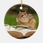 Adorable Chipmunk Reading Christmas Tree Ornament