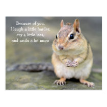 Adorable Chipmunk with Friendship Quote Postcard