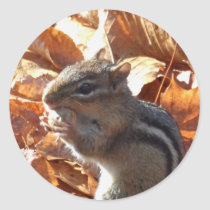 Adorable Chipmunk with Peanut Classic Round Sticker