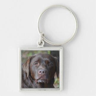 Adorable Chocolate Labrador Retriever Silver-Colored Square Keychain