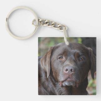 Adorable Chocolate Labrador Retriever Single-Sided Square Acrylic Keychain