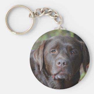 Adorable Chocolate Labrador Retriever Basic Round Button Keychain
