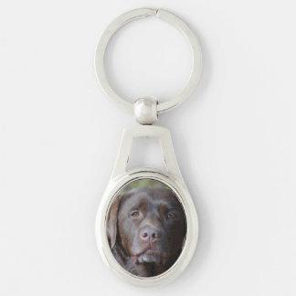 Adorable Chocolate Labrador Retriever Silver-Colored Oval Metal Keychain